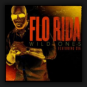 Flo Rida feat. Sia - Wild Ones