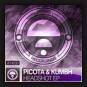 Picota & Kumbh - Headshot EP