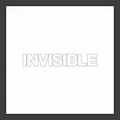 Invisible 12