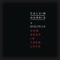 Calvin Harris - How Deep Is Your Love