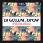 DJ Gollum feat. DJ Cap - Paradise