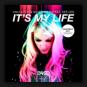 Van Dutch & Silver Nikan feat. Dee Dee - It's My Life (Danceboy 2k17 Remixes)