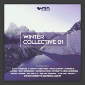 Winter Collective 01