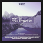 Various Artists - Winter Collective 01