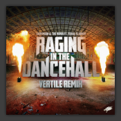 Raging In The Dancehall (Vertile Remix)